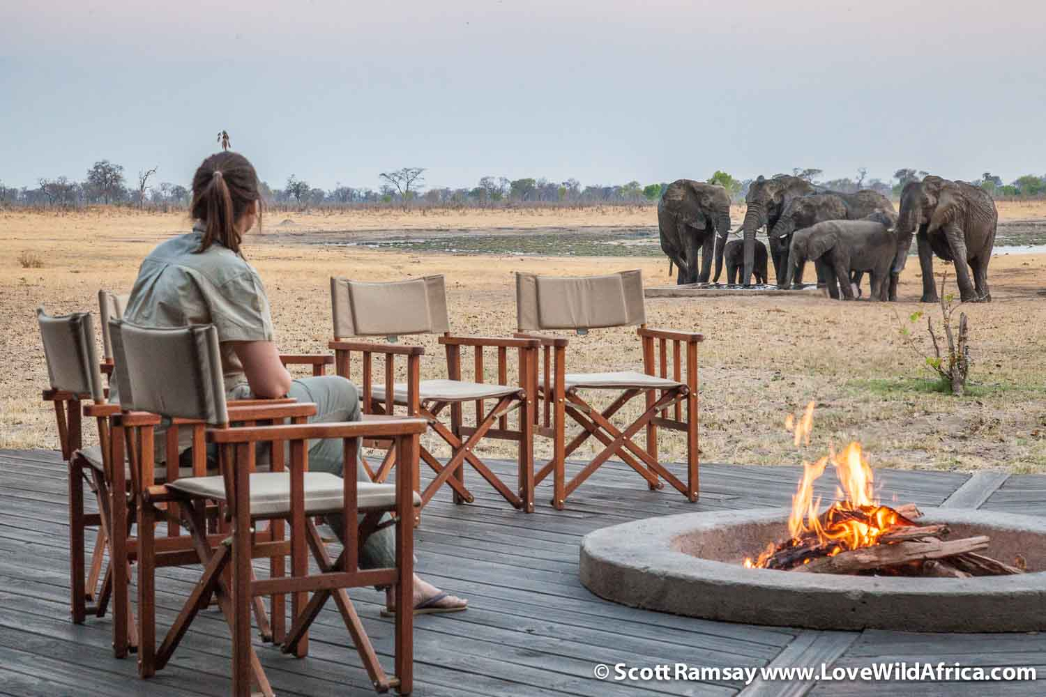 Davison's Camp in the WIlderness Safaris concession in Hwange is more low-key, and not as luxurious, but to me, it's more in keeping with the wilderness experience. Manageress Kimi White watches some elephants drink from the camp's pan.